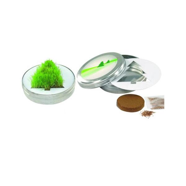 Tannenbaum aus Gras